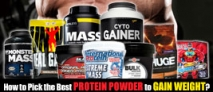 How to Pick the Best Protein Powder to Gain Weight?