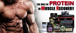The Role of Protein in Muscle Recovery.