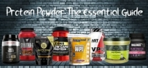 Protein Powder: The Essential Guide
