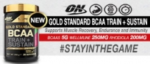 Optimum Nutrition Gold Standard BCAA Product Review