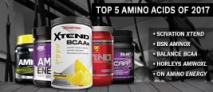 Top 5 Amino Acids of 2017