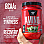 bsn amino x key points