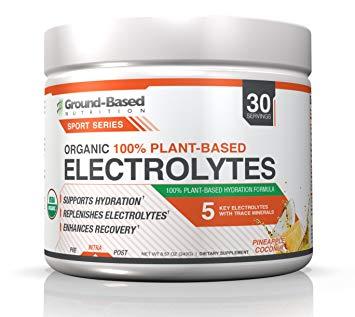 Ground Based Nutrition Organic 100% Plant Based Electrolytes