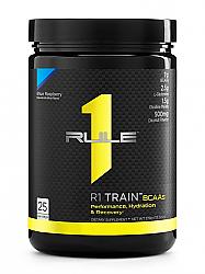 Rule 1 R1 Train