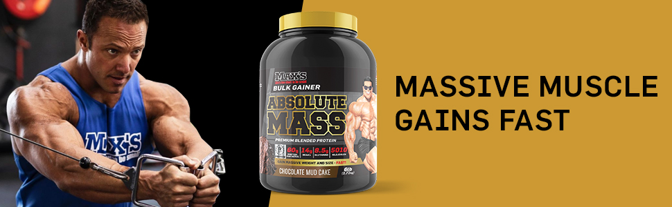 mass gains protein powder