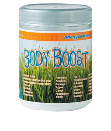 Body Boost Tub