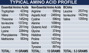 ehp labs oxy whey amino acid information