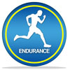 icon of endurance