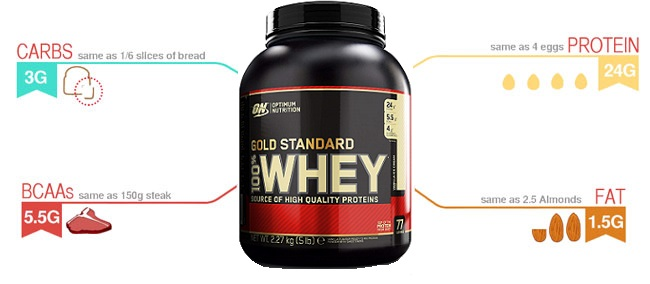 gold standard whey protein infographic