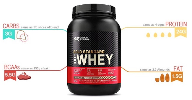 ON whey protein infographic